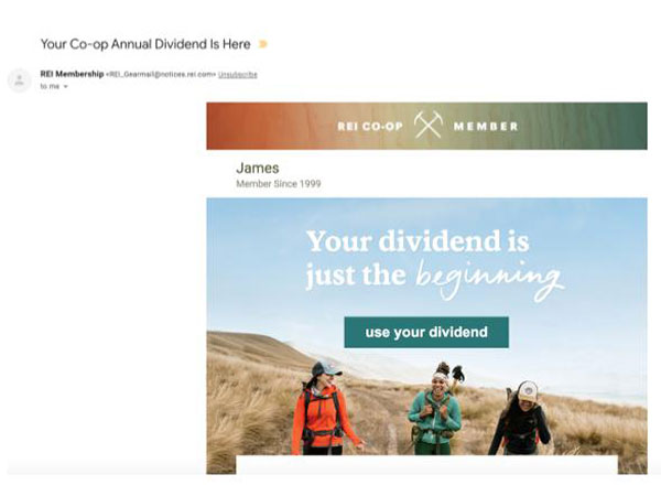 Rei Dividends Email